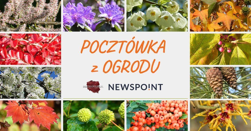 Pocztowka-z-ogrodu.pdf