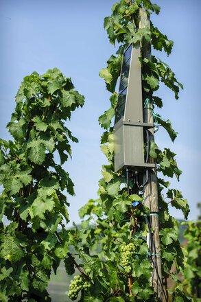 Ericsson: rolnictwo a sieć 5G