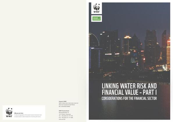 Linking Water Risk and Financial Value - Part I.pdf