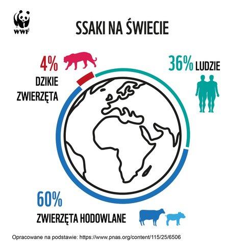 WWF_Światowy_Dzień_Bez_Mięsa.jpg