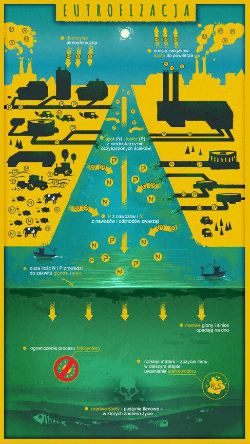 WWF_infografika_eutrofizacja.jpg