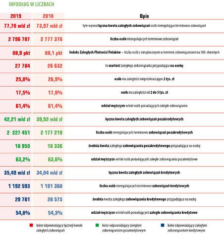44 InfoDLug raport roczny 01