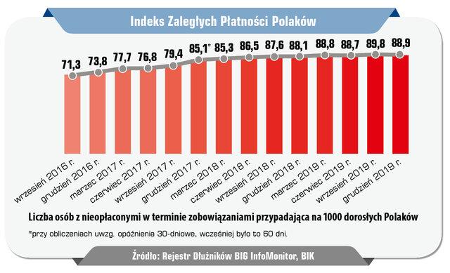 44 InfoDLug raport roczny 04