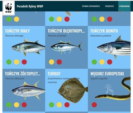 Poradnik Rybny WWF online