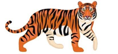 tygrys 2 ok.jpg