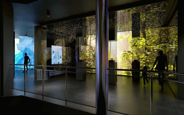 Las bursztynowy i lodowiec w nowym Muzeum Bursztynu, aut. Anna Bocek, mat. Muzeum Gdańska.jpg preview