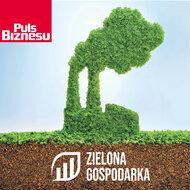 zielona sm2.jpg