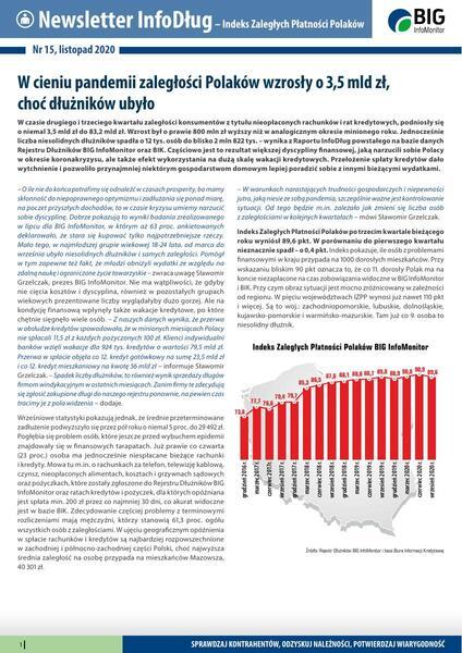 Raport InfoDług_listopad 2020.pdf