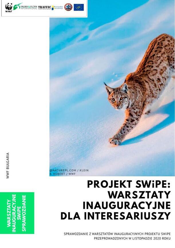 WWF_PL_projekt_SWiPE_raport.pdf