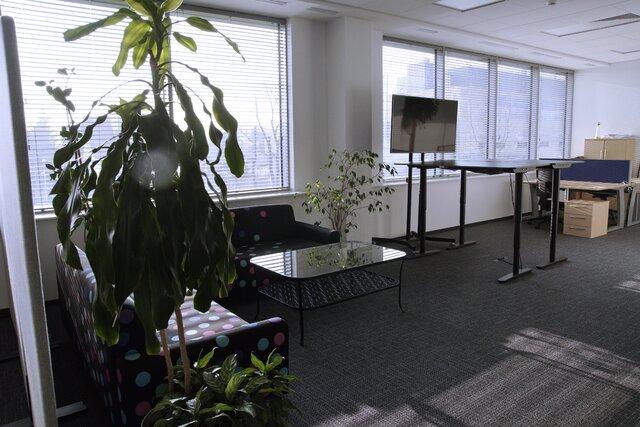 Netia biuro2