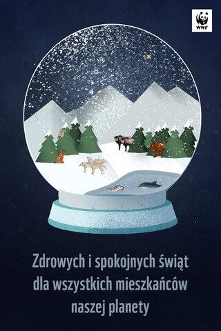 SWIETA_WWF_2_zyczenia (1).jpg