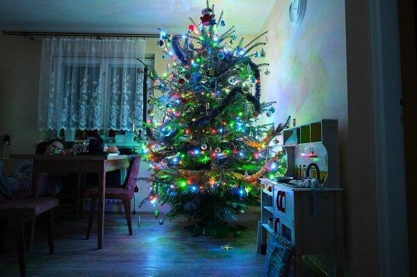 mój dom Mateusz Pazdan Trud świątecznych przygotowań