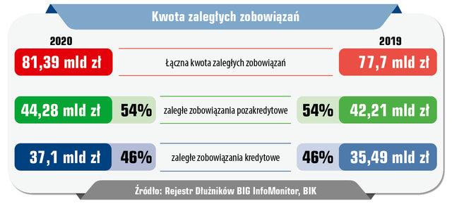 60 InfoDLug raport roczny_03.jpg