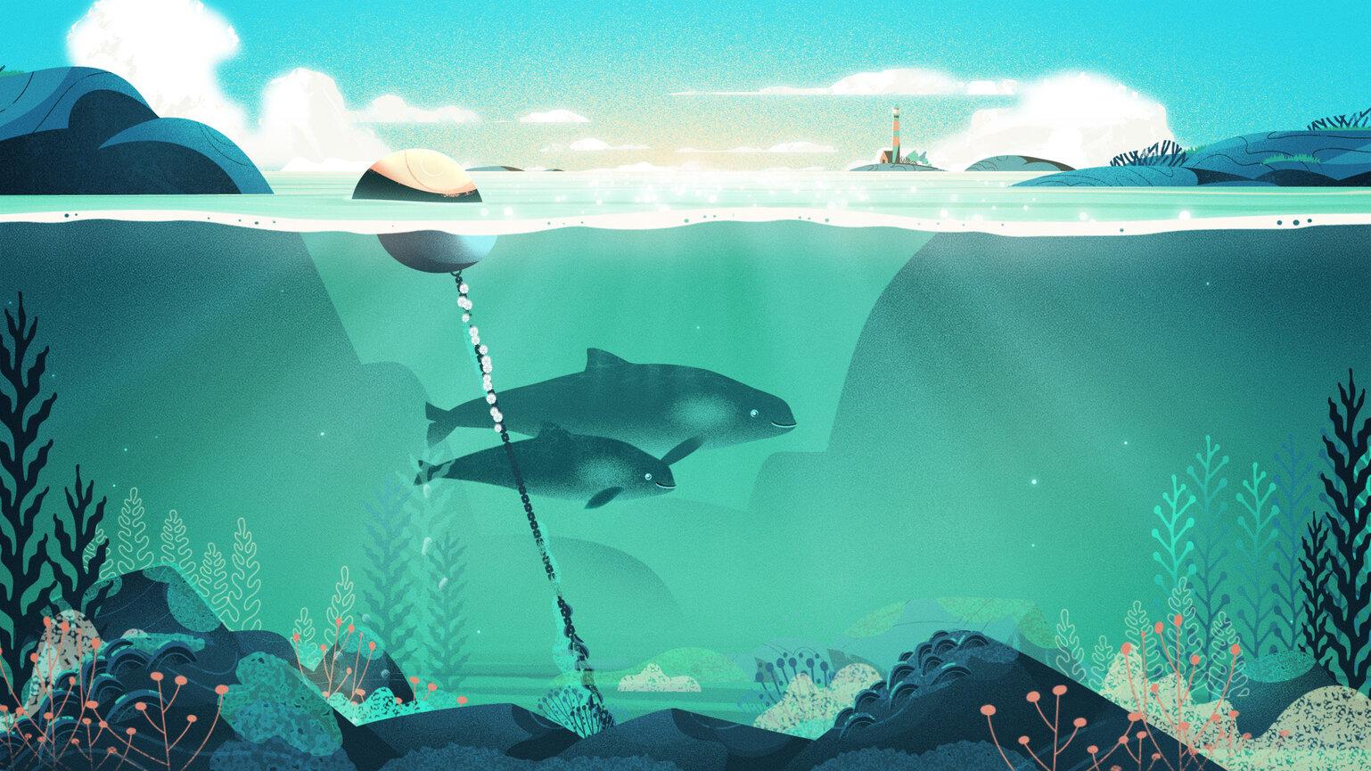 WWF Tumlare Still 01