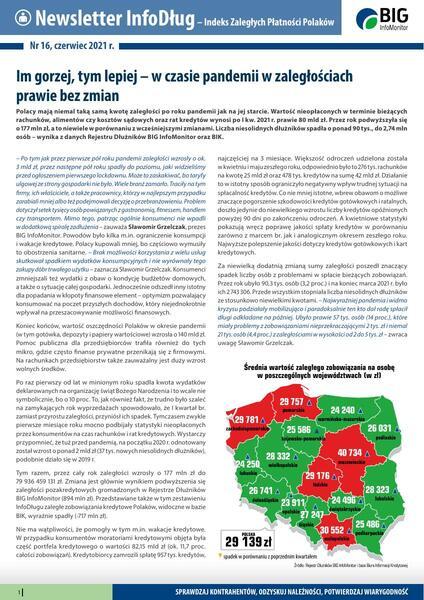 Raport InfoDług_czerwiec 2021