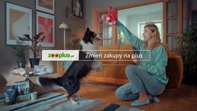 zooplus_6.jpg