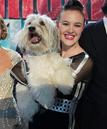 Pudsey and Ashley