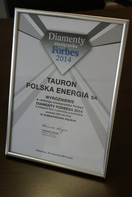 Diament Forbesa 2014.JPG