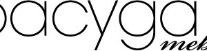 LogoPacyga.jpg