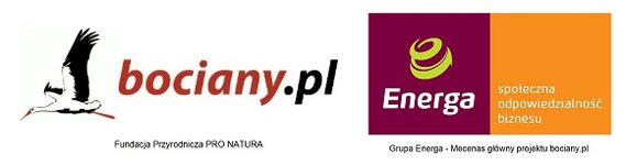 Bociany.pl i Energa