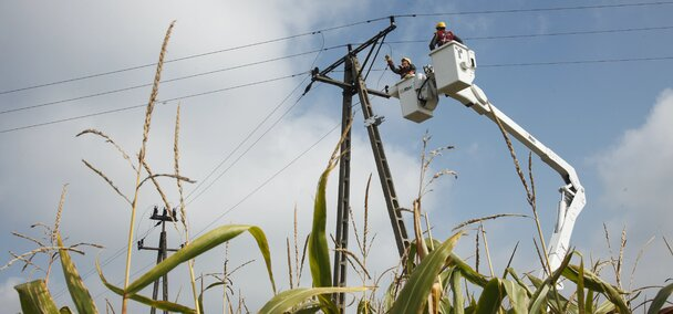 Energa prace na sieci