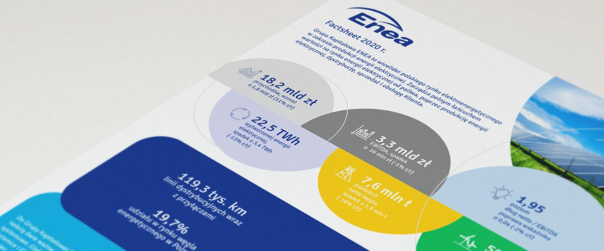 ena-factsheet-mockup-2020-pl