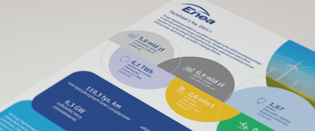 enea-factsheet-mockup-2