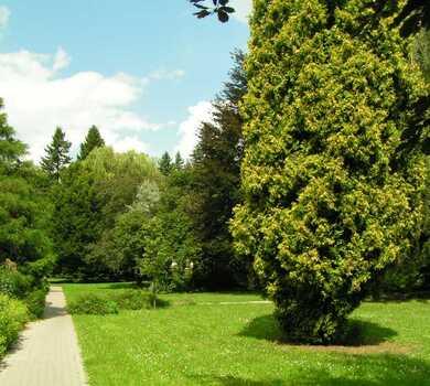 Park wokół Pałacu Rektorskiego