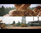 Grupa TAURON - biomasa w Elektrowni Stalowa Wola