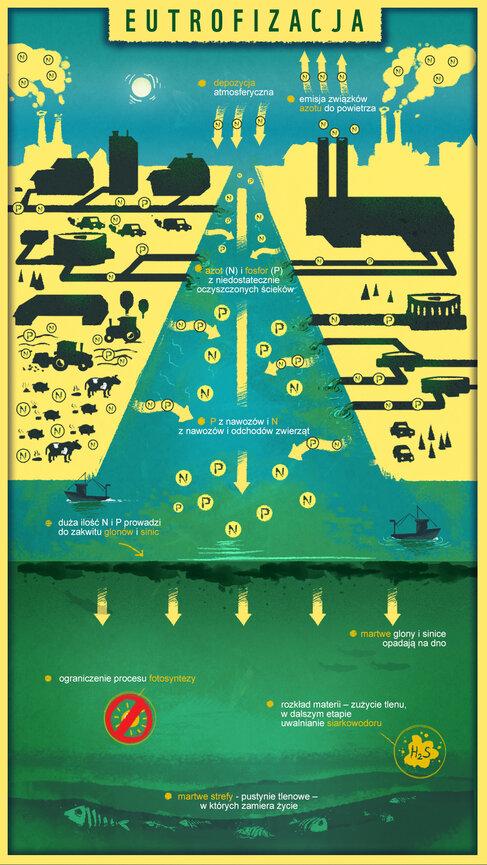 WWF-infografika PL.jpg