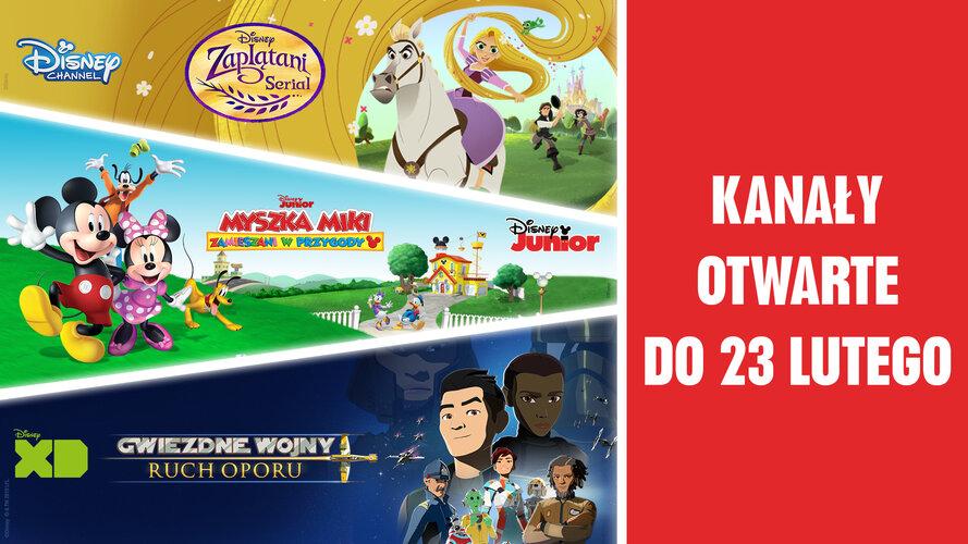 Disney_Play (1).jpg