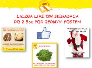 ZSIZ_6.png