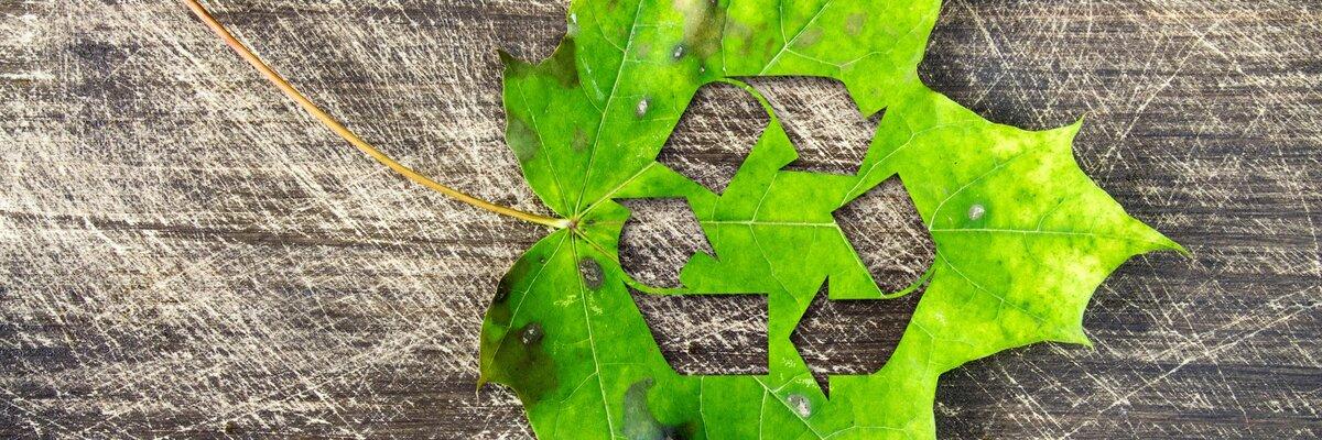 """Korzystając z dzierżawionego sprzętu budujemy """"circular economy"""""""