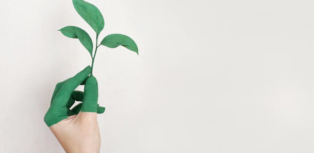 Prywatne poglądy rzecznika - czy mogą zagrozić firmie?