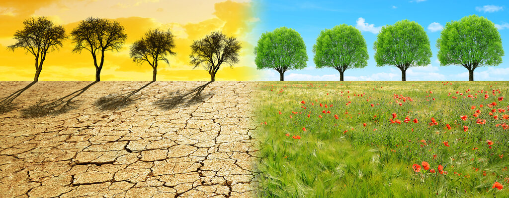 Nadchodzi klęska suszy