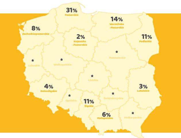 Polacy wybierają urlop nad wodą. Wyniki badania