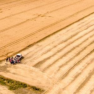 Klienci Concordii Polska Grupa Generali mogą ubezpieczyć się od suszy