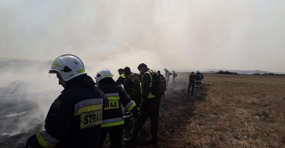 Żołnierze WOT pomagają gasić pożary w Biebrzańskim Parku Narodowym - film z drona
