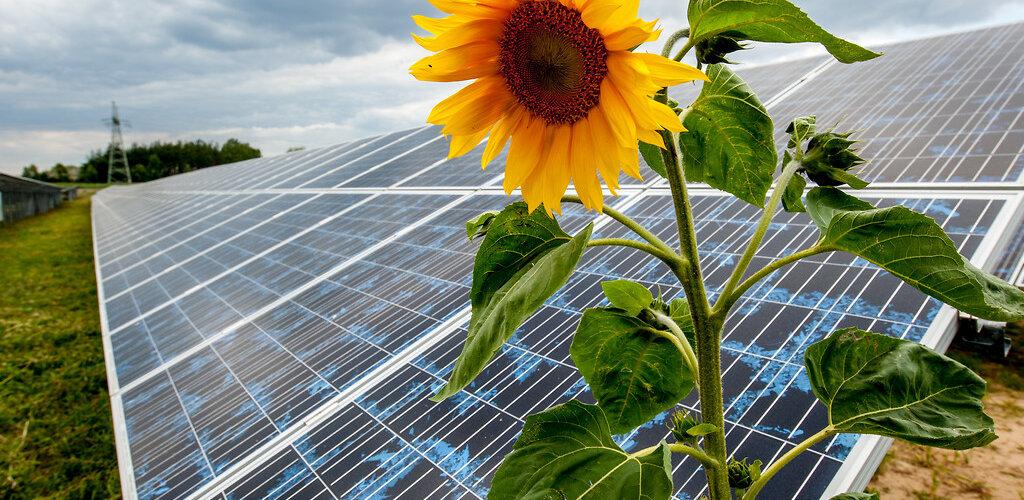 Proekologiczne inwestycje Grupy Energa