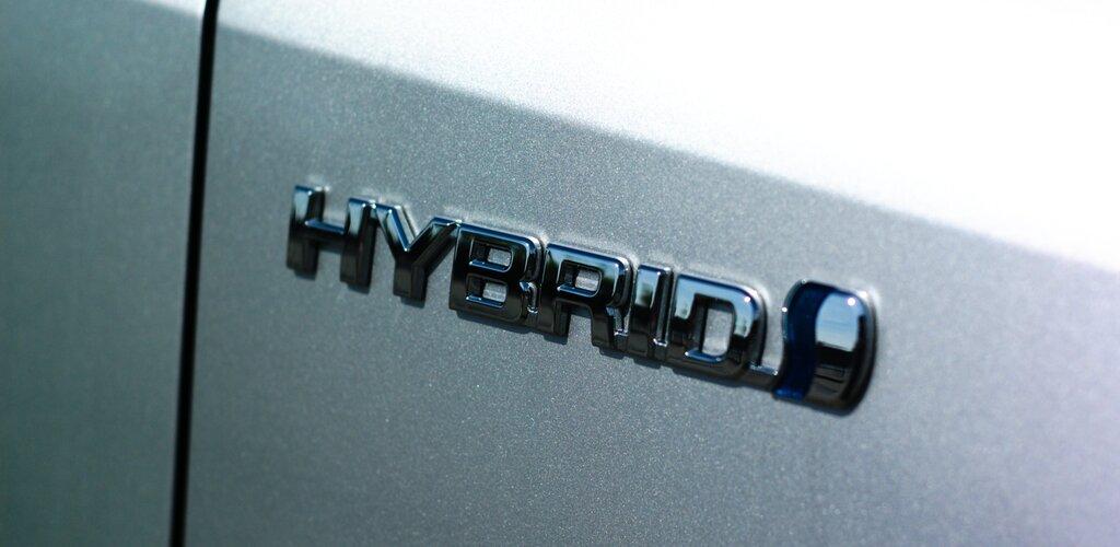 Elektryk czy hybryda?