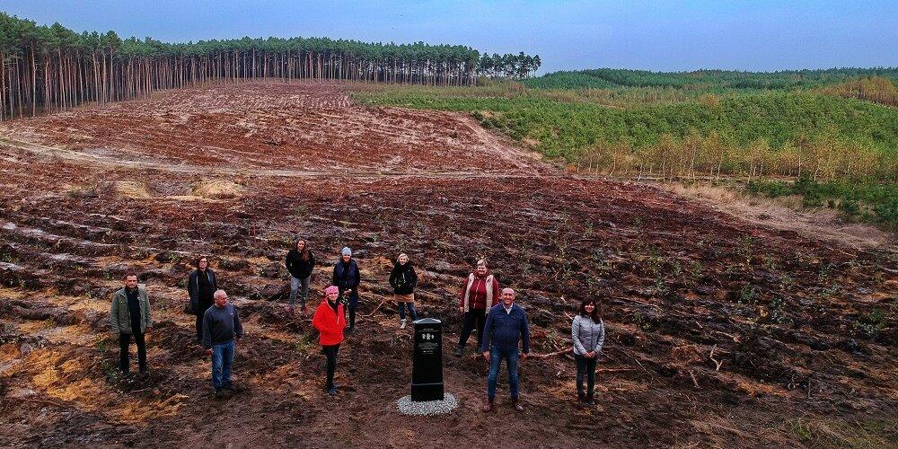462 drzewa w 462. rocznicę powołania Poczty Polskiej