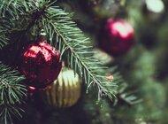 Wesołych Świąt i szczęśliwego Nowego Roku od zespołu netPR.pl teaser