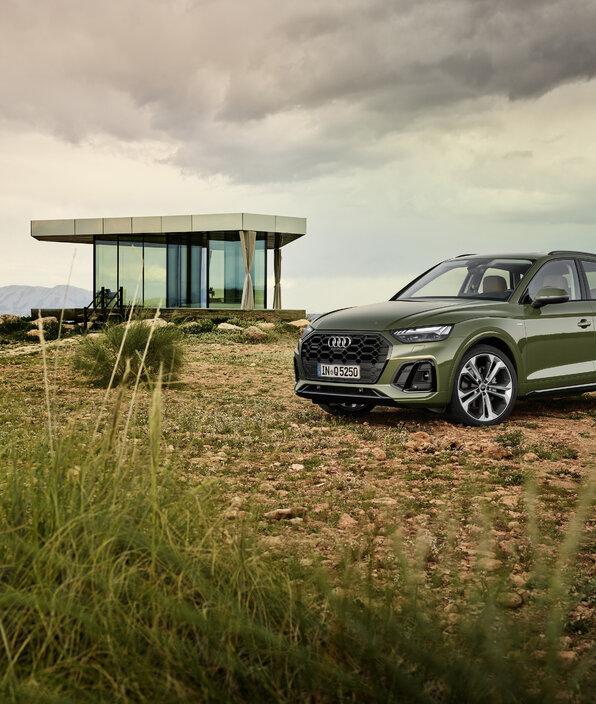 Audi odporne na pandemię