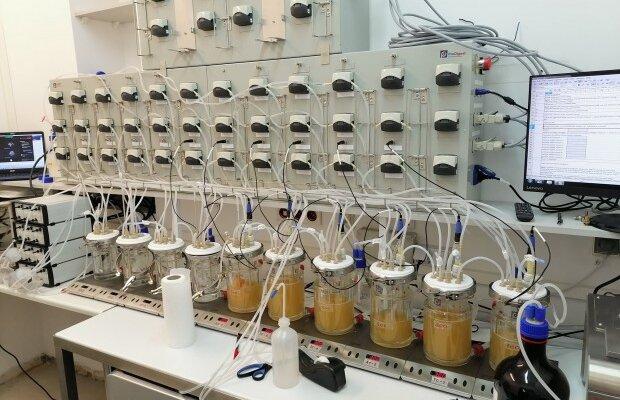 Sztuczny przewód pokarmowy w Instytucie Nauk o Żywieniu Człowieka SGGW