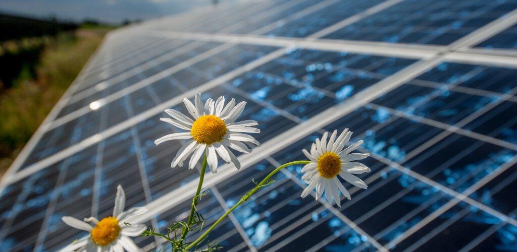 Energa Operator przyłącza kolejne słoneczne źródła energii