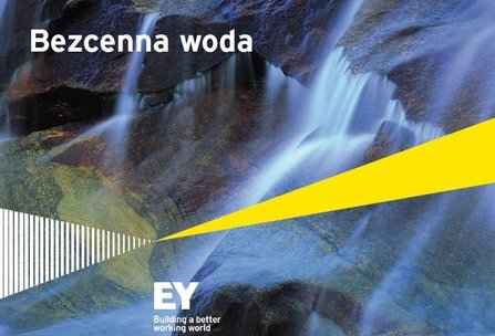 Analiza EY: Prawie 90 mld zł na inwestycje i co dalej? Sektor wodociągowo-kanalizacyjny potrzebuje reform