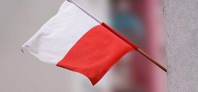 """""""...iż Polacy nie gęsi, iż swój język mają"""""""