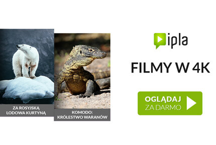 Więcej filmów Ultra High Definition w Samsung Smart TV