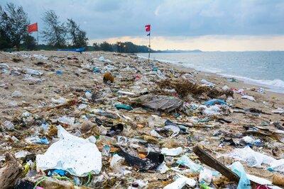 Wakacje w morzu plastiku i oceanie toksyn?