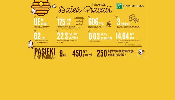 Polska miodem płynąca. Wzrost produkcji w całym kraju i…na dachu Banku BNP Paribas